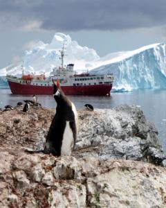Un grupo de turistas en la Antártida. AFP