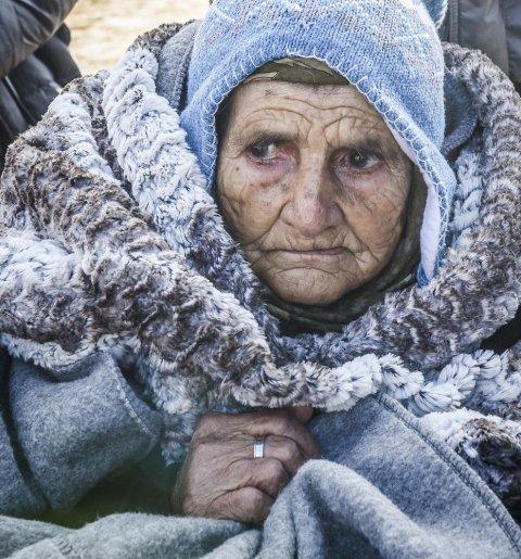 Una anciana en silla de ruedas llega junto con otros emigrantes y refugiados a la aldea de Miratovac después de cruzar a Serbia por la frontera con Macedonia, el 28 de enero de 2016./AFP/ARMEND NIMANI