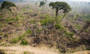 Vista aérea de una tala ilegal en el Bosque Nacional de Jamanxim , en el estado de Para, en la Amazonía brasileña. ANTONIO SCORZA (AFP)