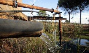 doñana-robo-agua