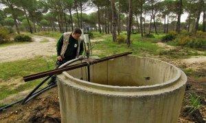 Pozo ilegal en Doñana. WWF