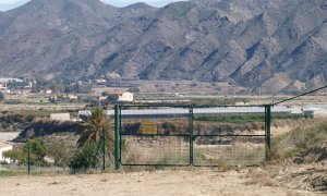 Una plantación de cannabis para eliminar la contaminación nuclear de Palomares