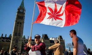 Mapa mundial del cannabis: ¿Qué países han acometido ya su regulación?