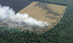 Vista aérea de la deforestación de la Amazonia
