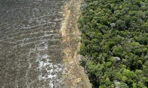 Vista área de la selva amazónica deforestada.
