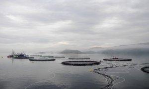 Vista general de varias piscifactorías de salmón ubicadas en el mar de Noruega.