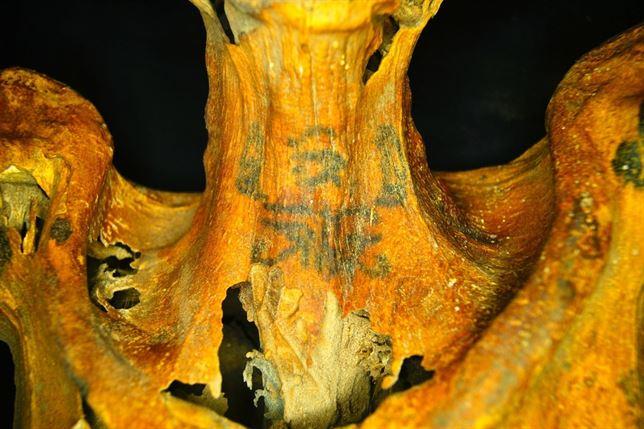 Tatuaje en momia femenina egipcia