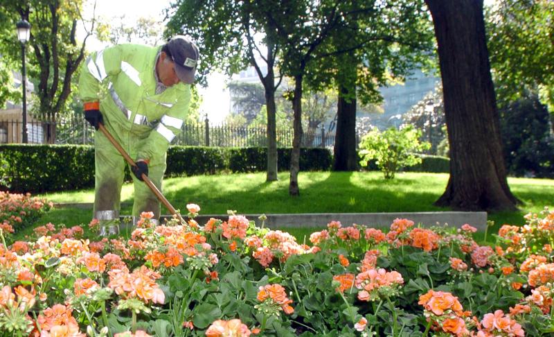 Detenidos por explotar a jardineros 12 horas al d a a cambio de 600 euros p blico - Trabajo jardinero madrid ...