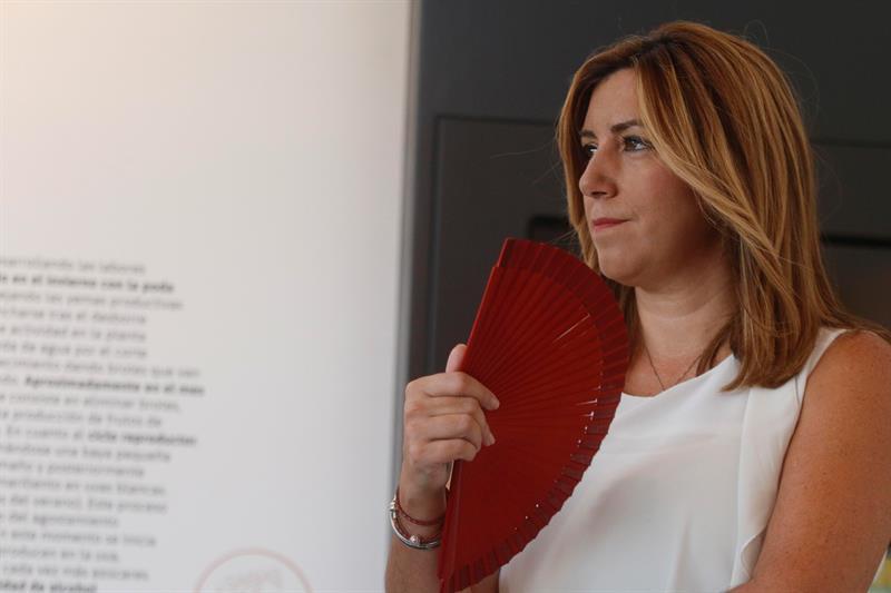 Susana Díaz se postula para liderar el PSOE: