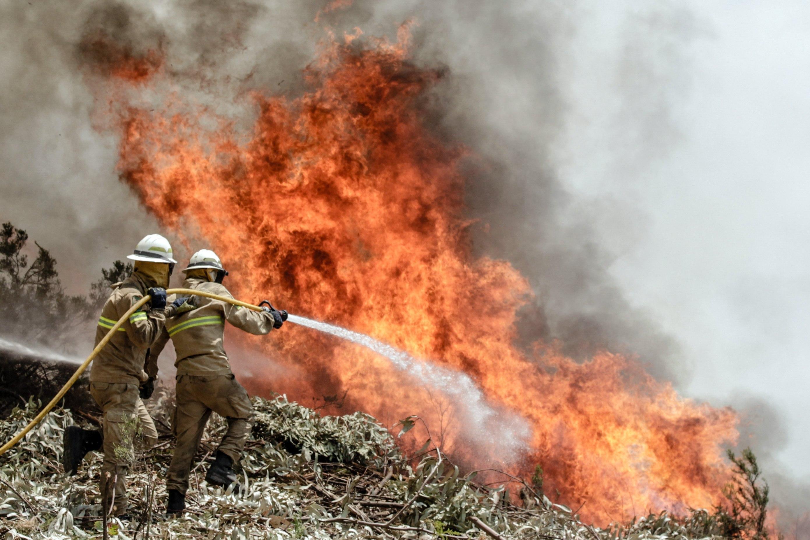 Resultado de imagen de incendio portugal