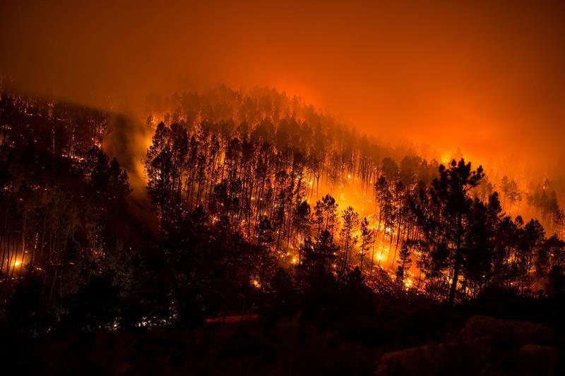 [EFE] Gran incendio azota la provincia de alicante con 7 muertos 59e09a507b6cc