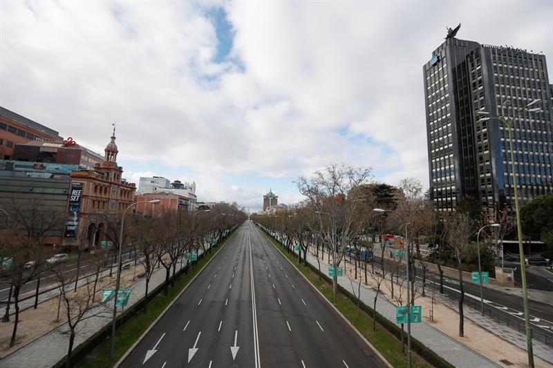 8ab669ed Paseo de la Castellana El Ayuntamiento de Madrid inicia los trabajos para  regenerar el arbolado del Paseo de la Castellana