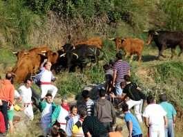 Las peores fiestas de España