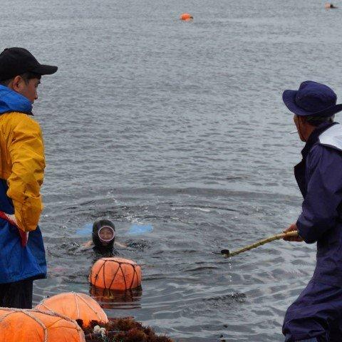 Una haenyeo regresando a la orilla. Fotografía hecha por mí en la isla de Jeju.