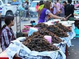 8 comidas típicas que incluyen insectos