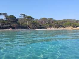 Isla de Porquerolles