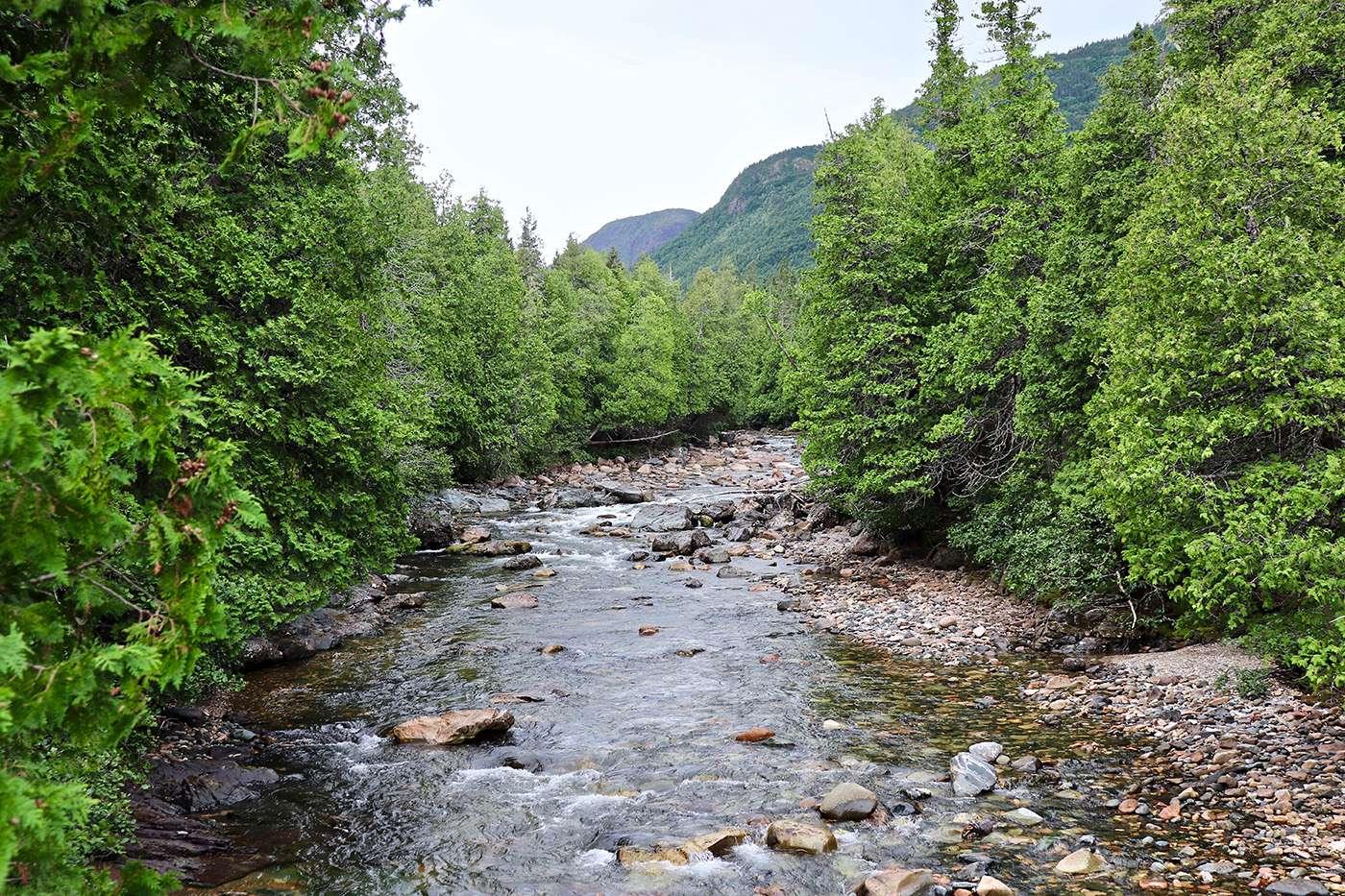 Parque Nacional de la Gaspésie