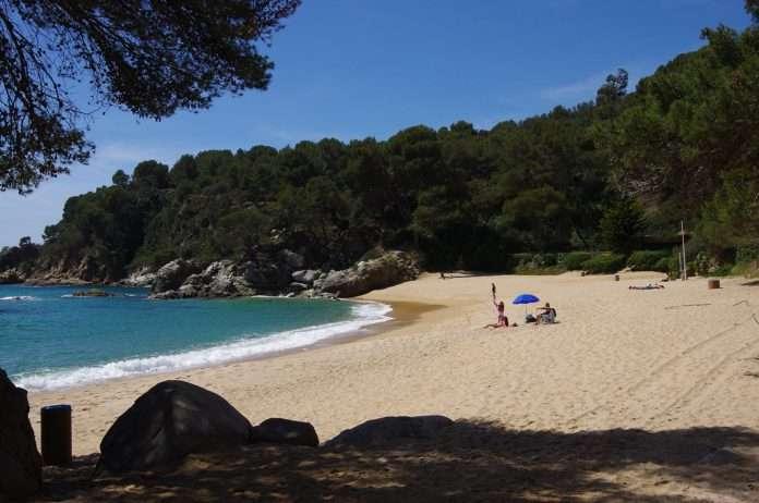 Playa de Treumal