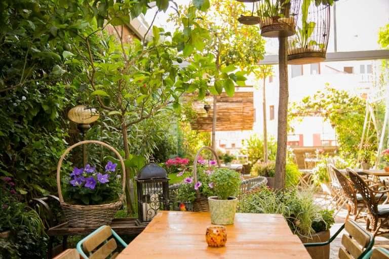 Los mejores patios escondidos de Madrid