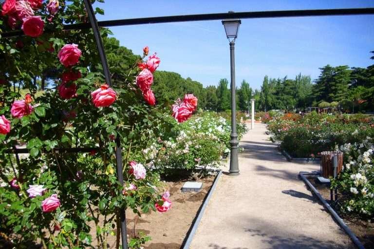 Jardines escondidos en Madrid para disfrutar de la primavera