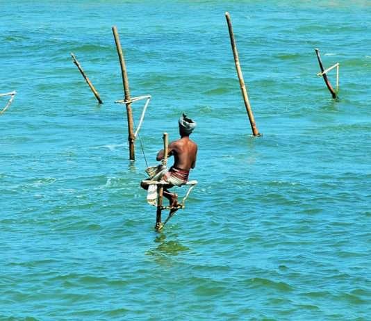Pescadores Zanco de Sri Lanka - Foto de Oscar Presilla