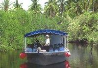 excursi-n-por-la-costa-en-mazatl-n-recorrido-por-la-selva-en-la-in-mazatlan-104346