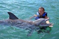 programa-encuentro-con-delfines-en-isla-mujeres-in-cancun-150625